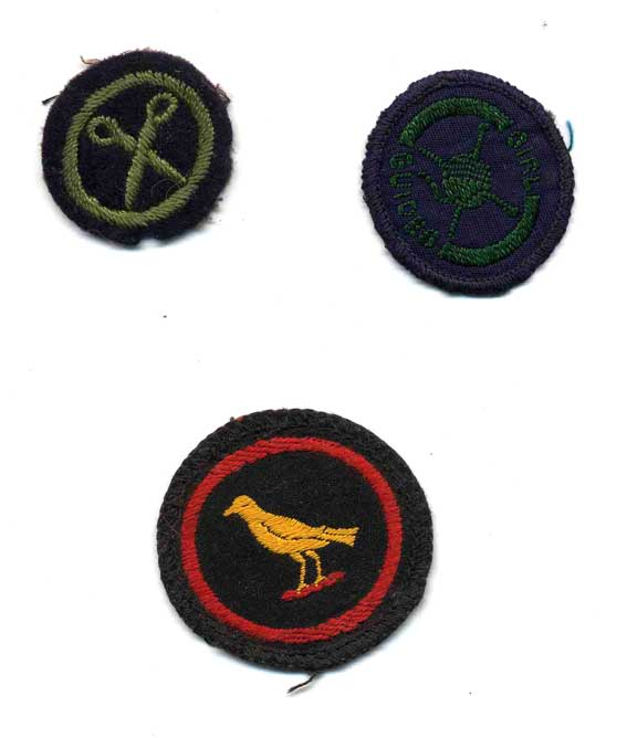 merit badges girl guides